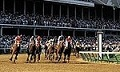 Picture of kentucky derby